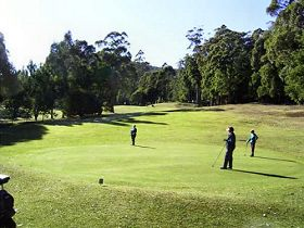 Sheffield Golf Course - Newcastle Accommodation