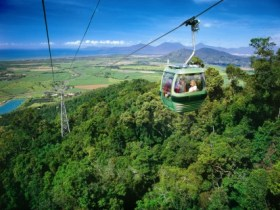 Skyrail Rainforest Cableway - Newcastle Accommodation