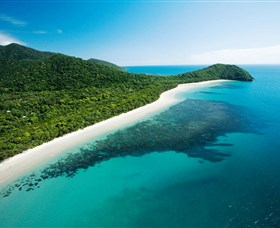 Cape Tribulation Daintree National Park - Newcastle Accommodation