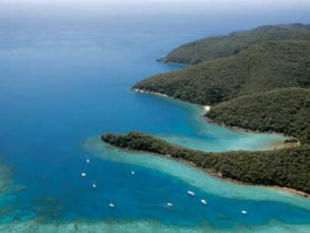 Butterfly Bay - Hook Island