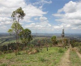 City View Camping and 4WD Park - Newcastle Accommodation