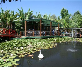 Blue Lotus Water Garden - Newcastle Accommodation