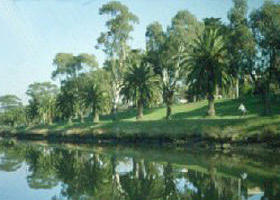 Maribyrnong River - Newcastle Accommodation