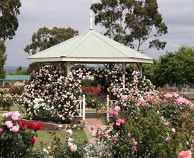 Morwell Centenary Rose Garden - Newcastle Accommodation