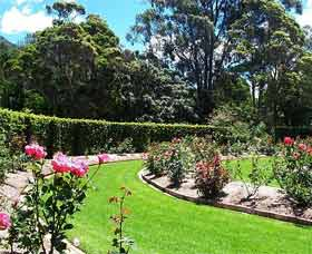 Wollongong Botanic Garden - Newcastle Accommodation