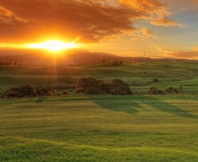Links Shell Cove Golf Course - Newcastle Accommodation