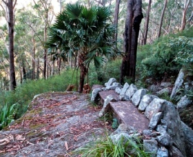 Wodi Wodi Walking Track - Newcastle Accommodation