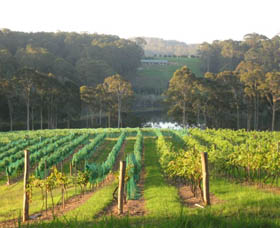 Tilba Valley Wines - Newcastle Accommodation