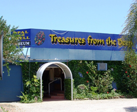 Treasures from the Deep - Opal and Shell Museum - Newcastle Accommodation