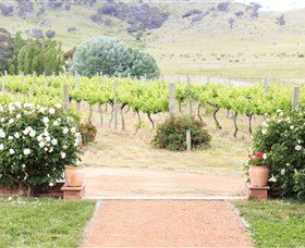 Brindabella Hills Winery - Newcastle Accommodation