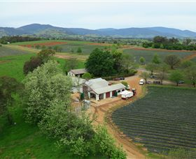 Schmidts Strawberry Winery - Newcastle Accommodation