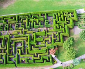 Hedgend Maze and Healesville Laser Sport - Newcastle Accommodation
