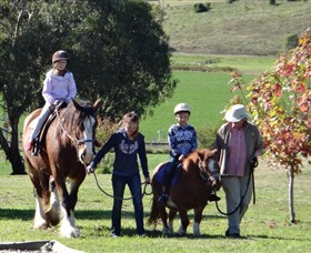 Bathurst Farm Experience - Newcastle Accommodation