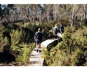 Hume and Hovell Walking Track - Henry Angel Trackhead - Newcastle Accommodation