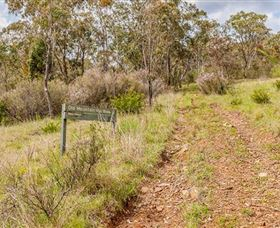 Old Mountain Road Walking Track - Newcastle Accommodation