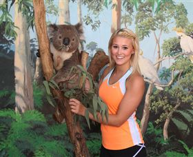 Maru Koala and Animal Park - Newcastle Accommodation