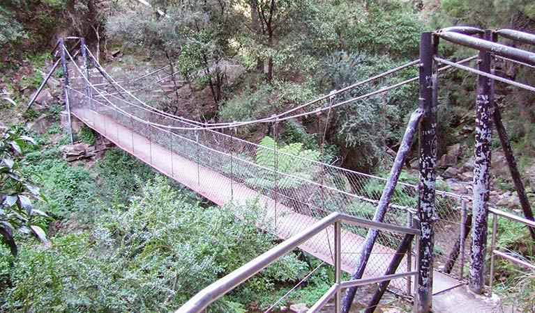 Jenolan River walking track - Newcastle Accommodation