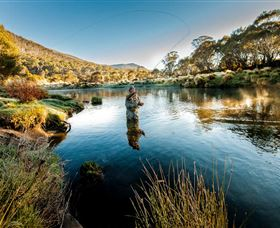 Fly Fishing Tumut - Newcastle Accommodation