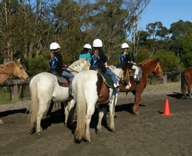 Darkes Forest Riding Ranch - Newcastle Accommodation
