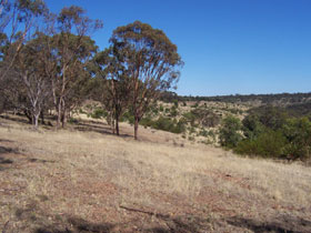 Onkaparinga River National Park - Newcastle Accommodation