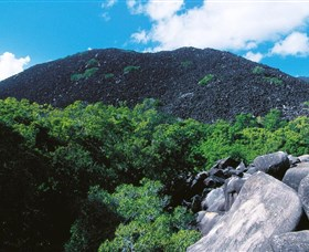 Black Mountain Kalkajaka National Park - Newcastle Accommodation