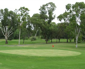Moree Golf Club - Newcastle Accommodation