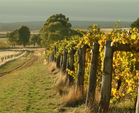 Captains Creek Organic Wines - Newcastle Accommodation