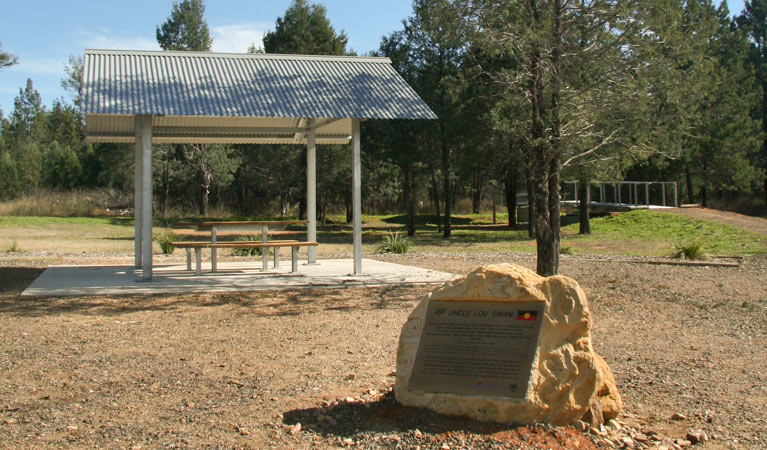 Terry Hie Hie picnic area - Newcastle Accommodation