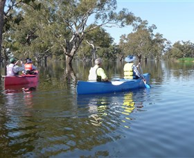 Doodle Cooma Swamp - Newcastle Accommodation