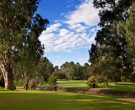 Commercial Golf Course - Newcastle Accommodation
