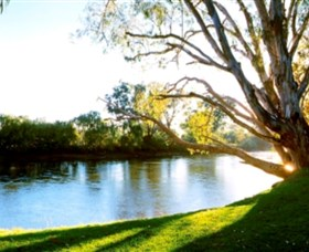 Albury - Murray River Precinct - Newcastle Accommodation