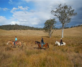 Chapman Valley Horse Riding - Newcastle Accommodation