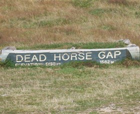Dead Horse Gap - Newcastle Accommodation