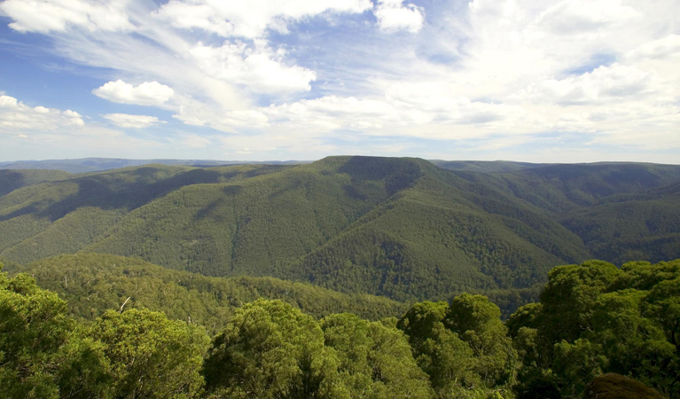 Barrington Tops National Park - Newcastle Accommodation