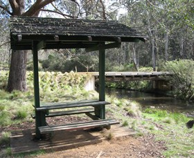Barrington Tops State Forest - Newcastle Accommodation