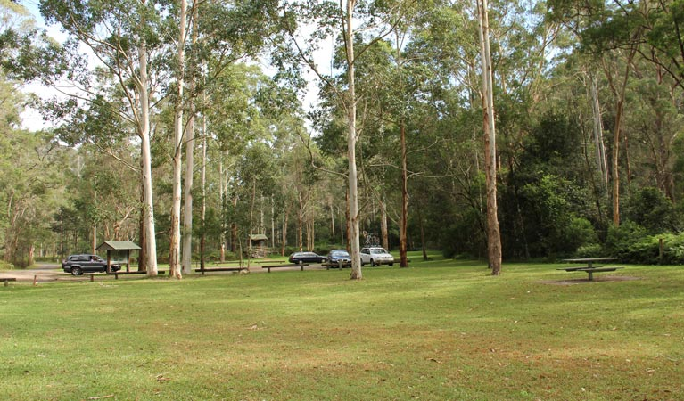 Mill Creek picnic area - Newcastle Accommodation