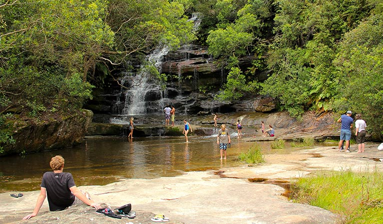Somersby Falls picnic area - Newcastle Accommodation
