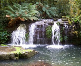 Barrington Tops National Park Walks - Newcastle Accommodation