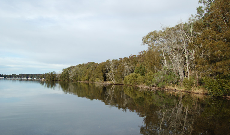 Lake Macquarie State Conservation Area - Newcastle Accommodation