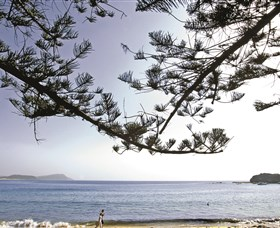 Terrigal Beach - Newcastle Accommodation