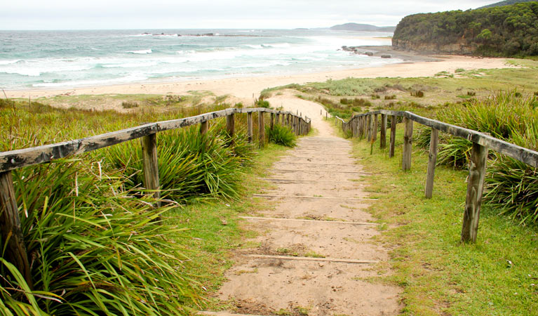 Pretty Beach to Durras Mountain walking track