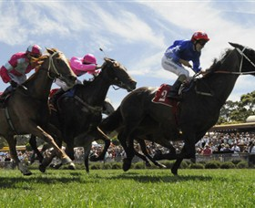 Moruya Racecourse - Newcastle Accommodation