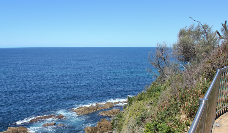 Moruya Heads lookout - Newcastle Accommodation