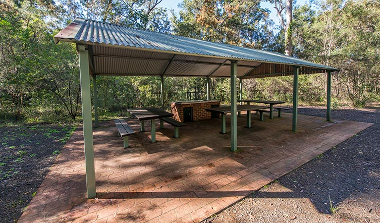 Brimbin picnic area - Newcastle Accommodation