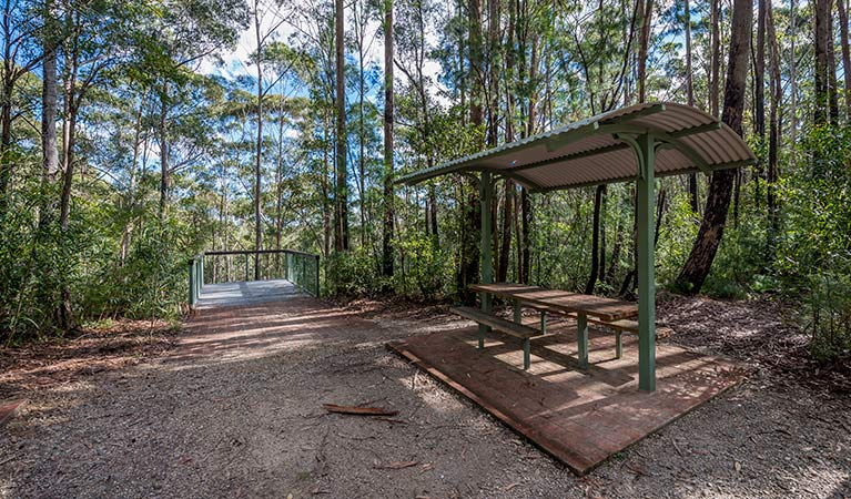 Big Nellie lookout and picnic area - Newcastle Accommodation