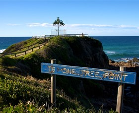 One Tree Point Lookout and Picnic Area - Newcastle Accommodation