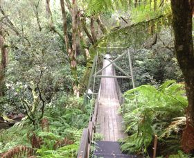 Bemm River Scenic Reserve - Newcastle Accommodation