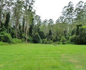 Kerewong State Forest - Newcastle Accommodation