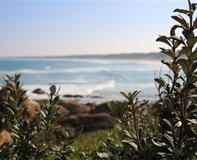 Cape Conran Coastal Park - Newcastle Accommodation