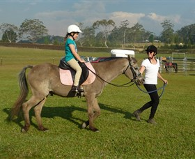 Port Macquarie Horse Riding Centre - Newcastle Accommodation